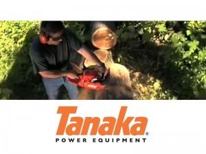 tanaka page