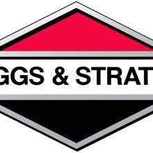 briggs-stratton-engine-jpg